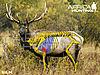 elk-vitals-bowhunting.jpg