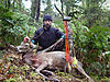 bowhunting_stag_kevinlow_spiker.jpeg