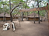 Elephant_Camp_Niasa_Mozambik_.JPG
