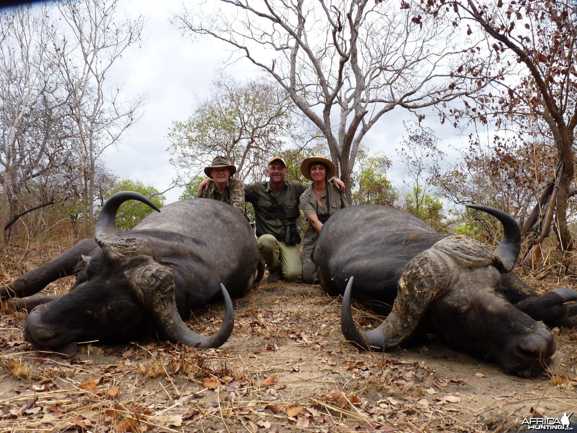 Double on Buffalo, hunt in the Selous, Tanzania