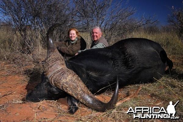 Big Buffalo hunted in Namibia on the Waterberg Plateau