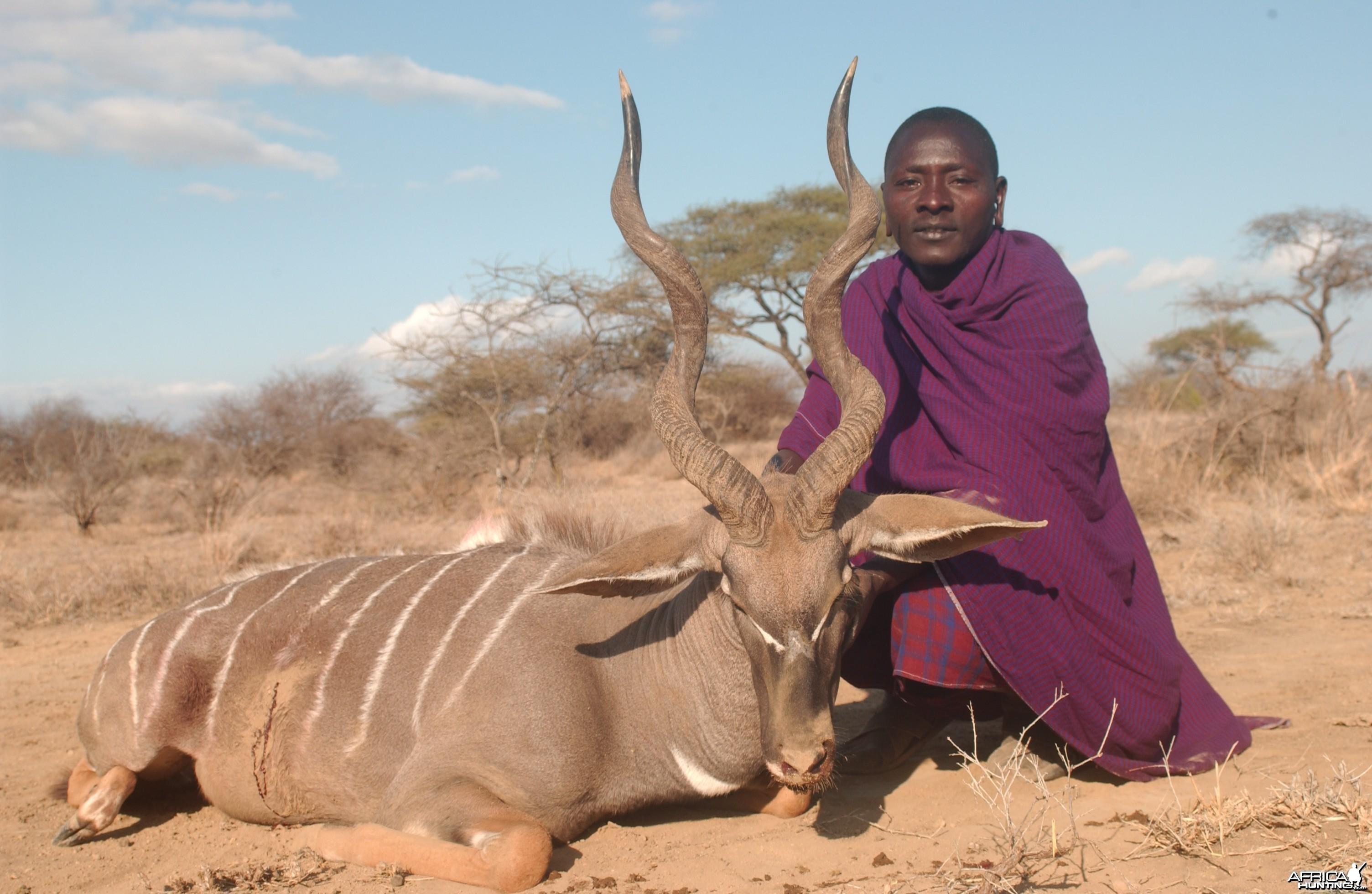 Hunting Lesser Kudu