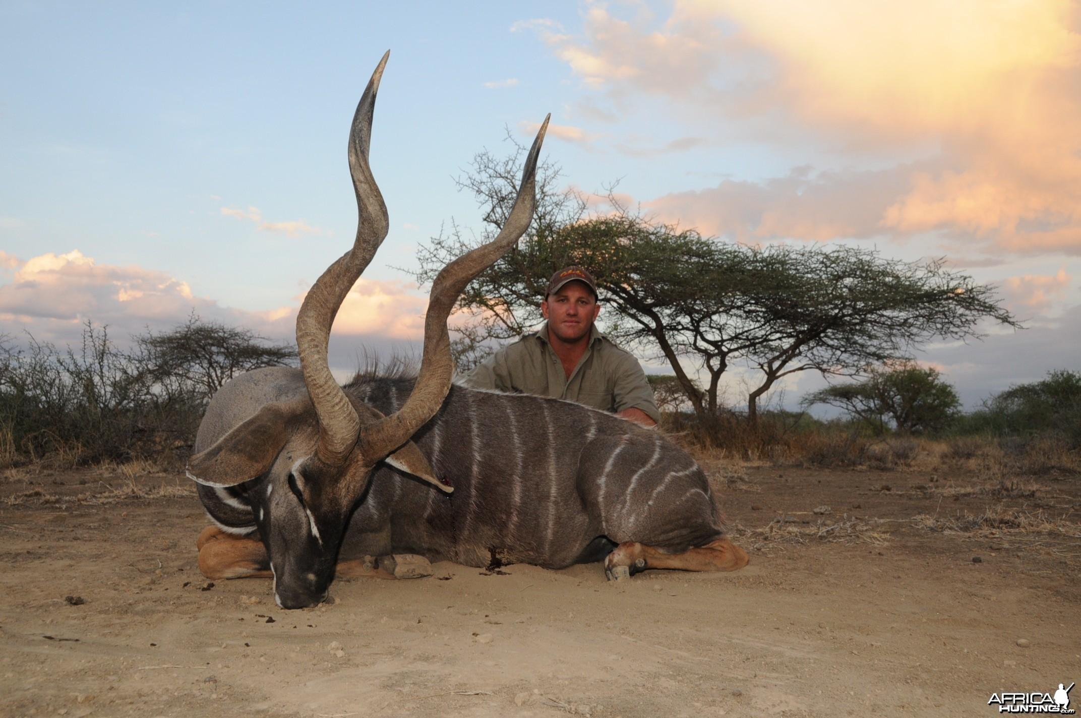 Ngaserai Lesser Kudu