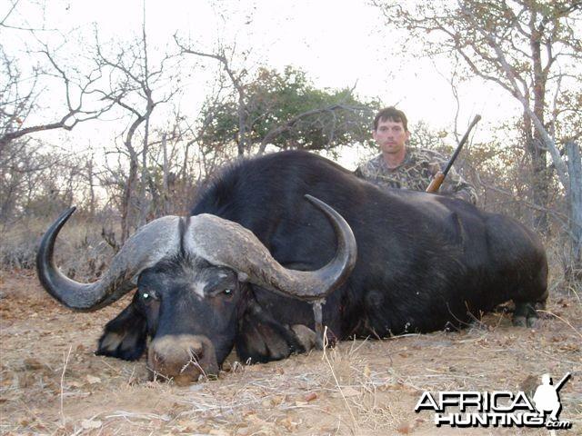 Mike buffalo 2010