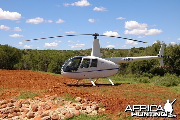 Helicopter can be used fot charter flight to our lion concession