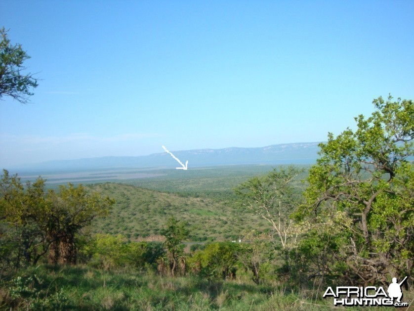 Leeukop Safaris Property in South Africa