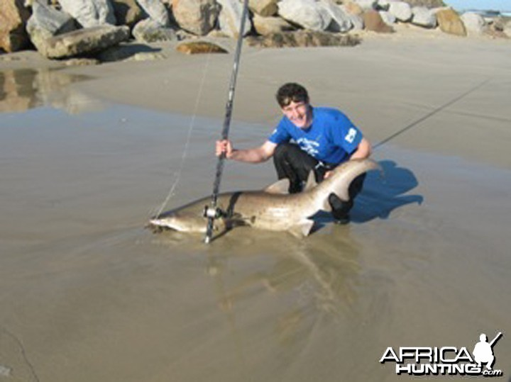 Shark fishing in and around Port Elizabeth South Africa