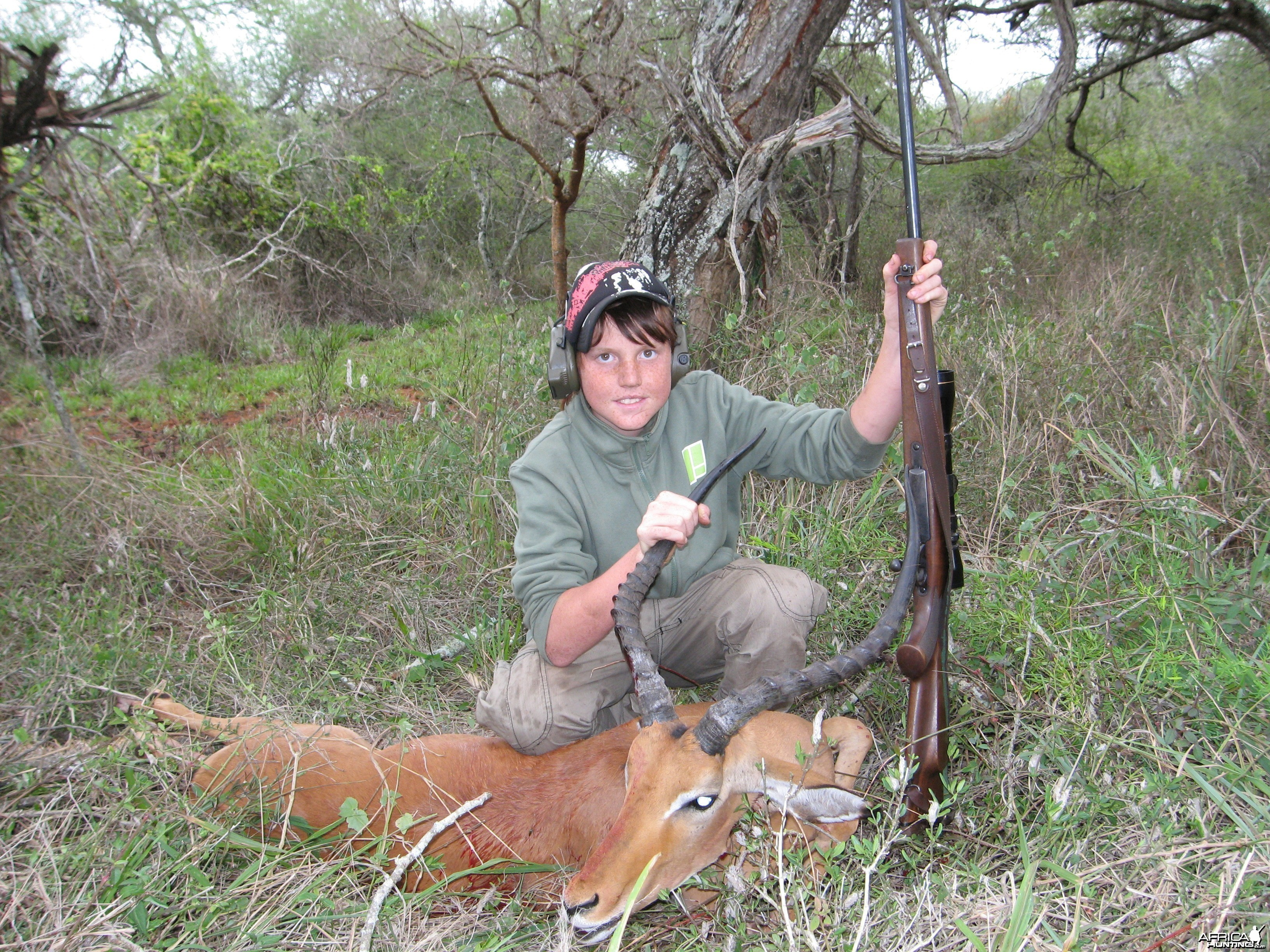 fine impala