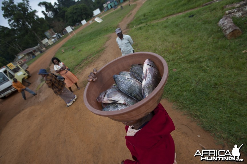 Fish on head, Uganda
