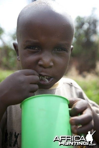 Boy eats ants from cup