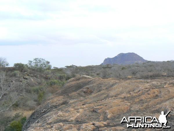 Hunting Tanzania