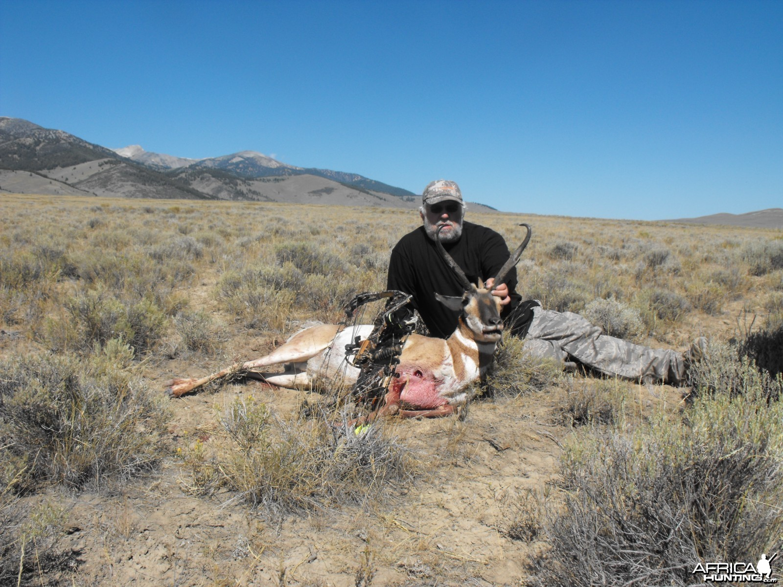 Bowhunting Pronghorn