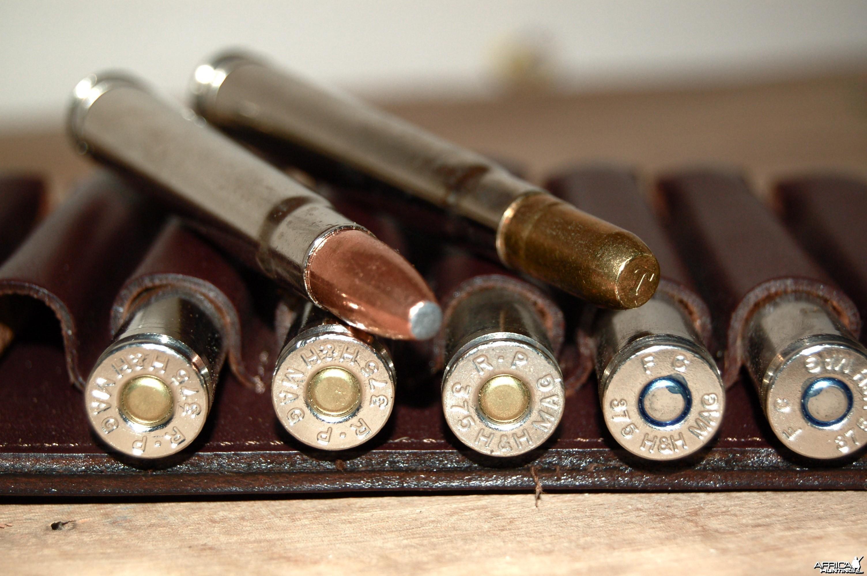 .375 H&H Magnum