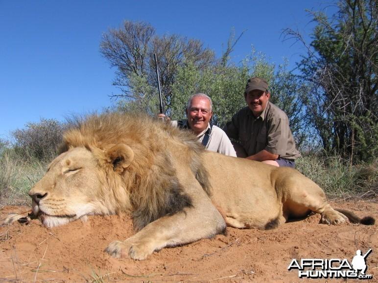 Sergio's lion December 2010