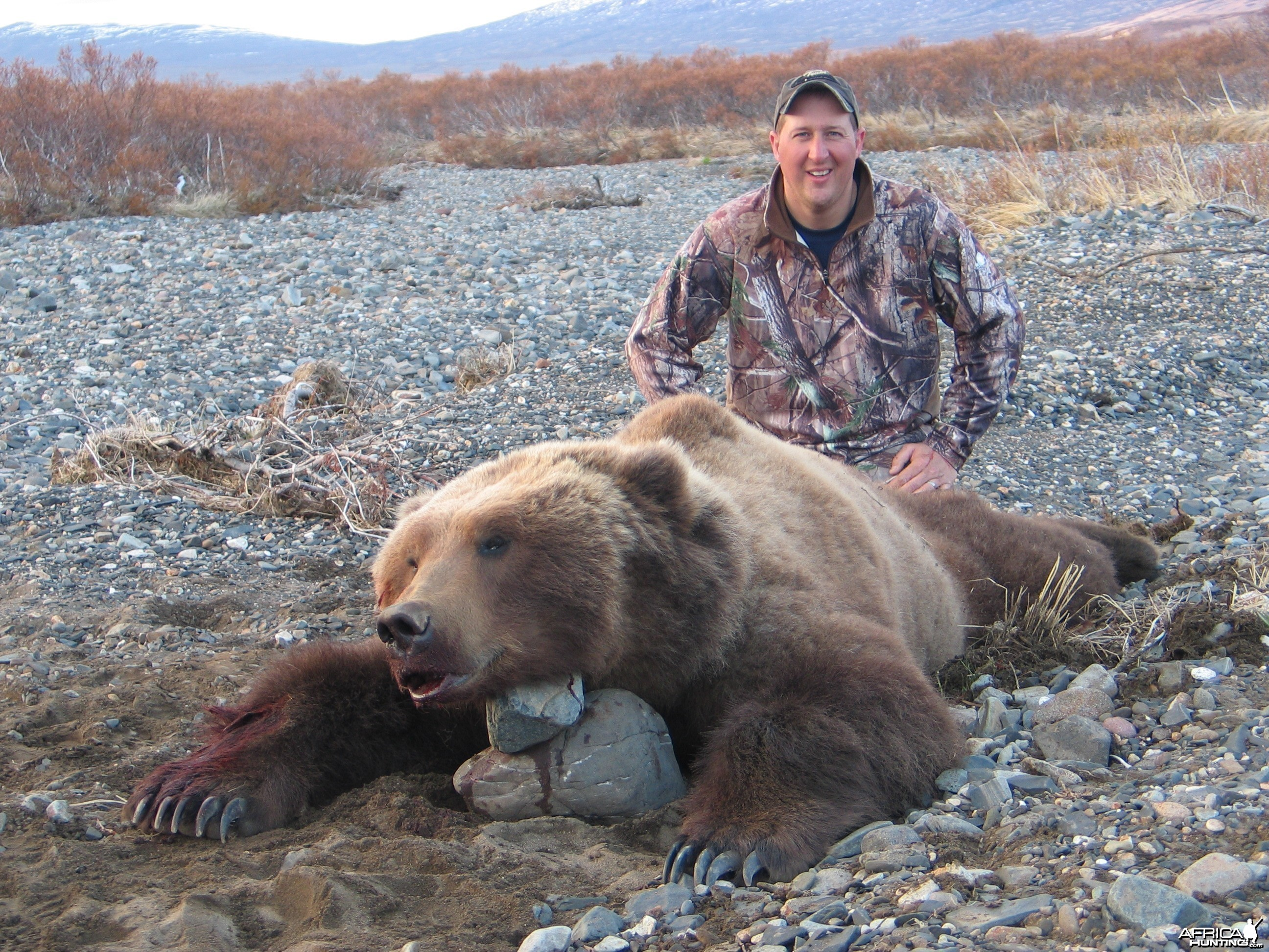Hunting Alaskan Brown Bear