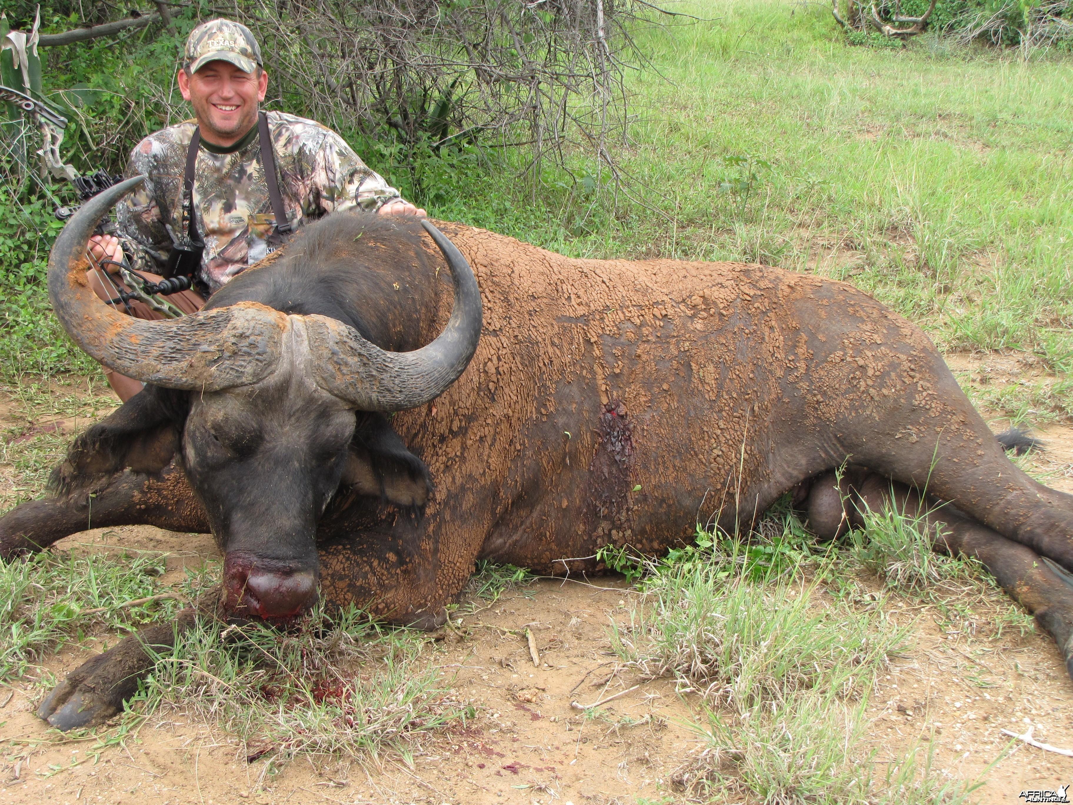 Bowhunting Nile Buffalo Uganda
