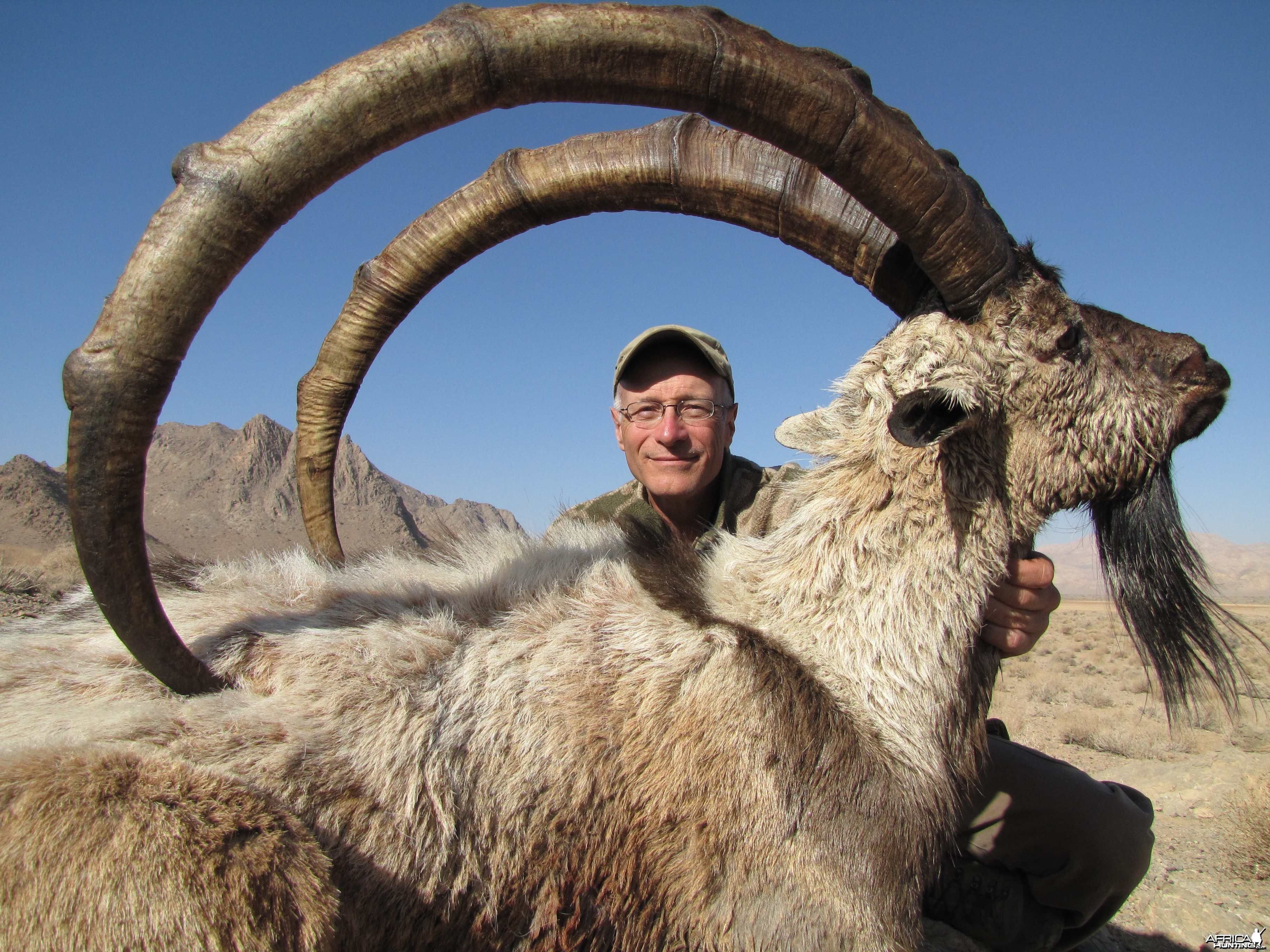 Hunting Ibex in Iran
