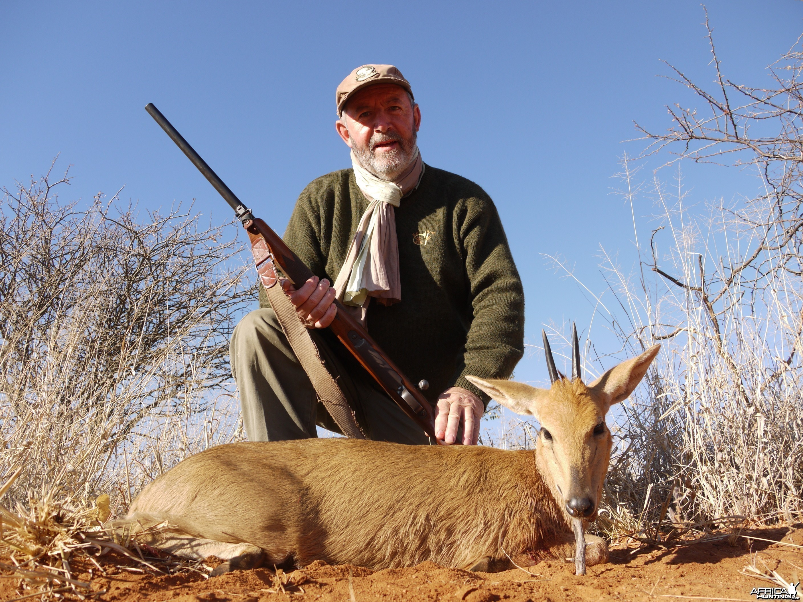 Hunting Grey Duiker in Namibia