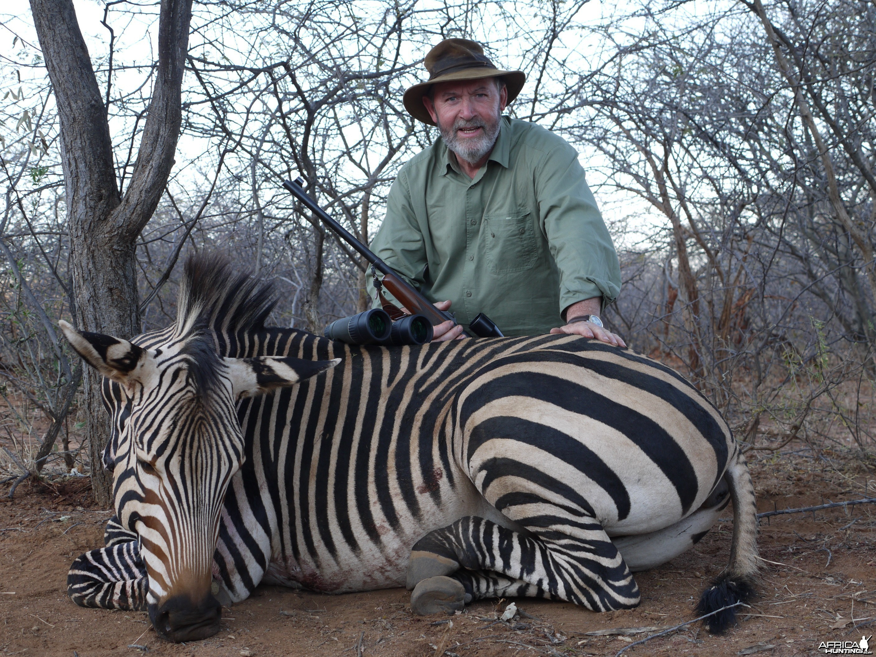 Hunting Mountain Zebra in Namibia