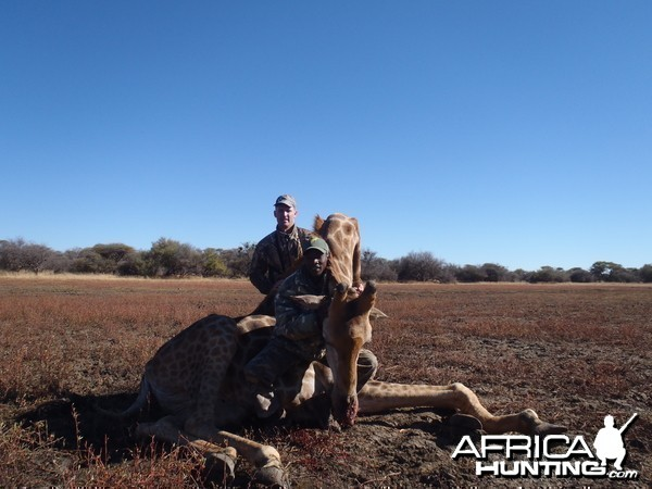 Hunting Giraffe in Namibia