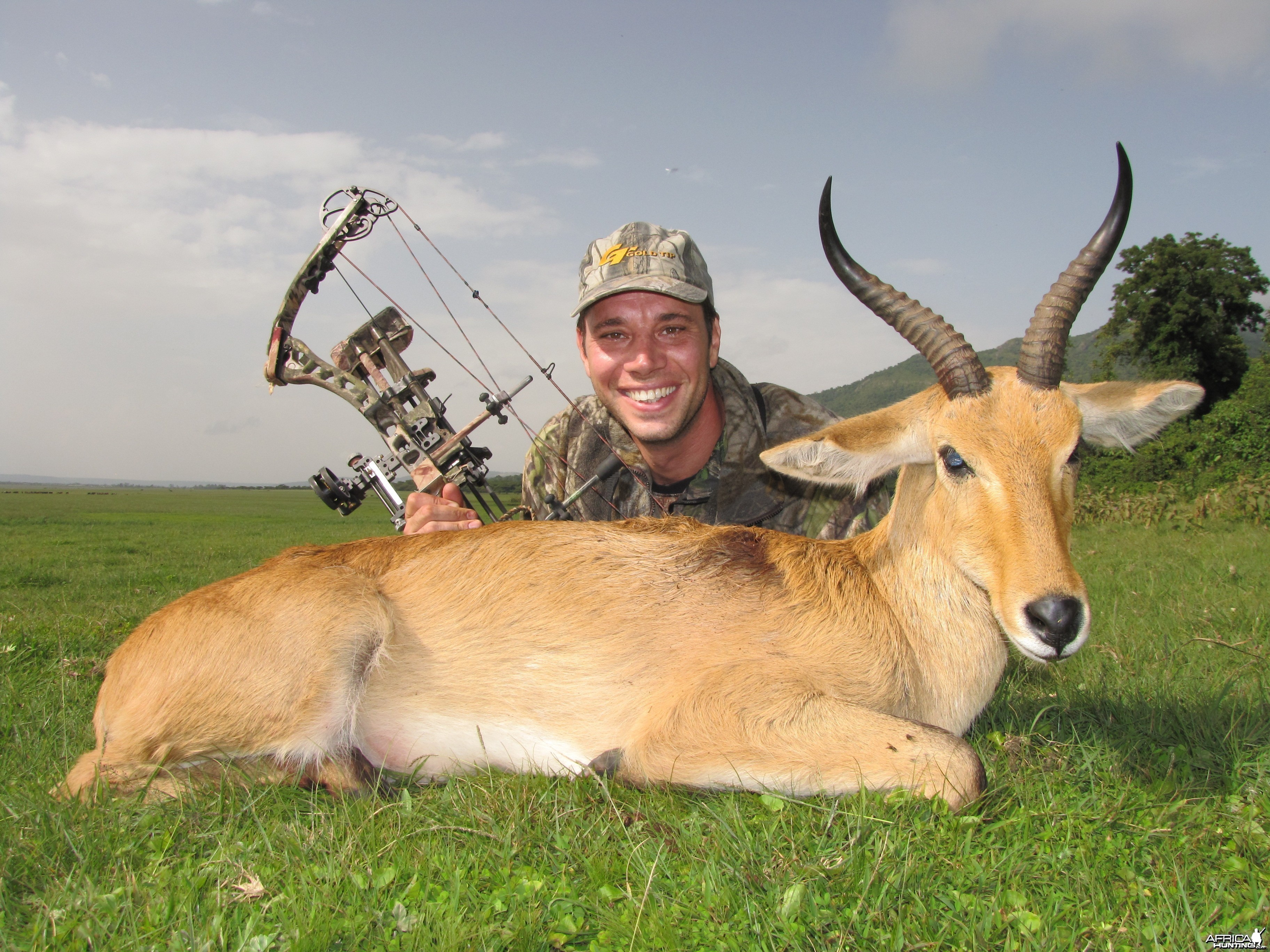 Bowhunting Abyssinian Bohor Reedbuck in Ethiopia