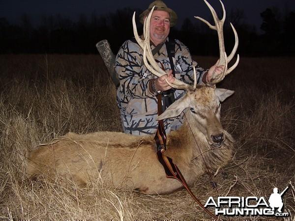 Bowhunting Red Deer