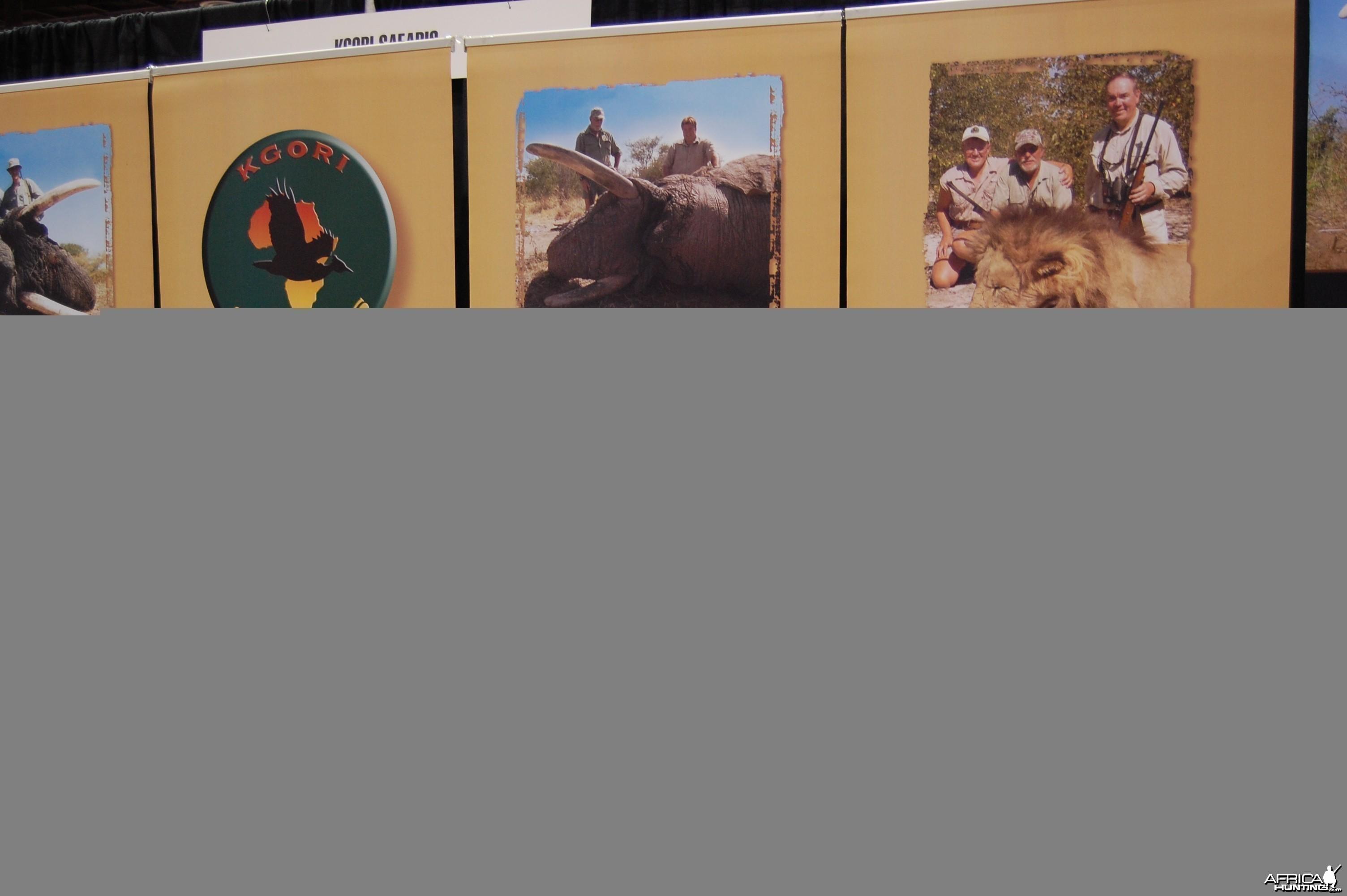 Kgori Safaris