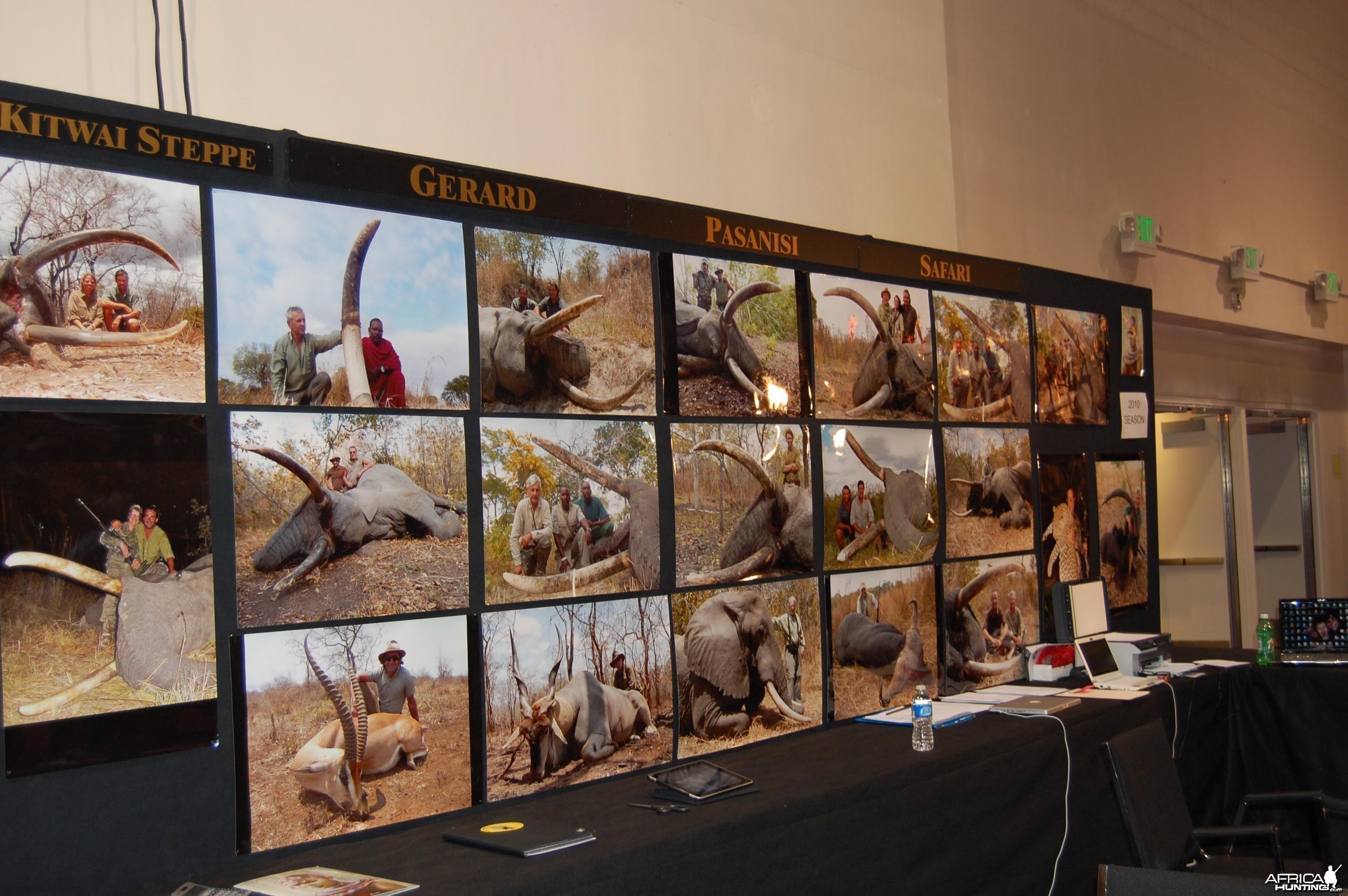 Passanisi Safaris
