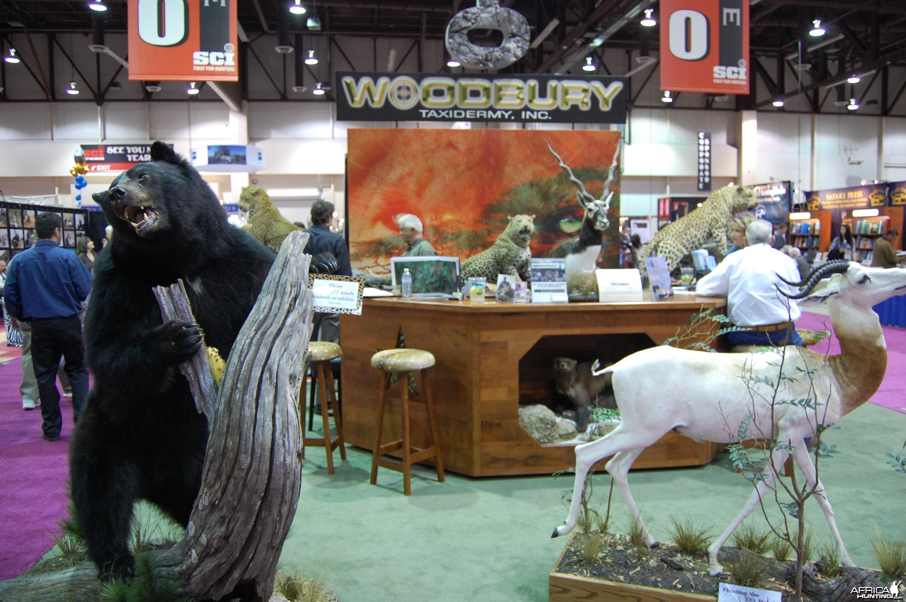 Woodbury Taxidermy