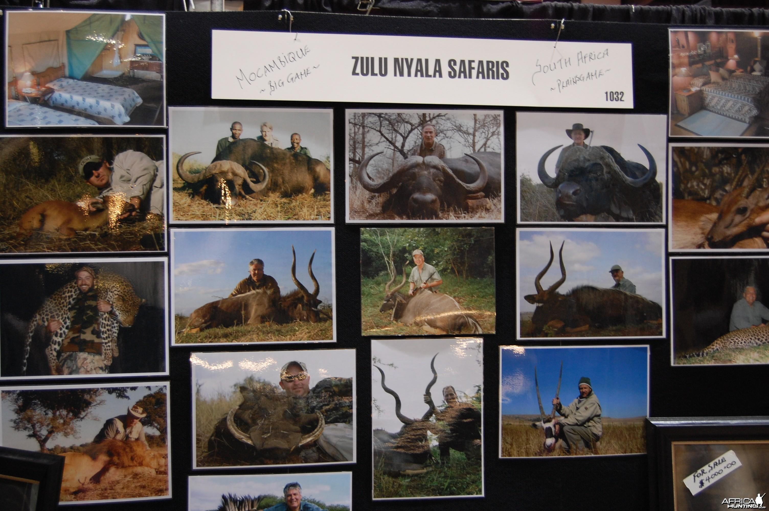 Zulu Nyala Safaris