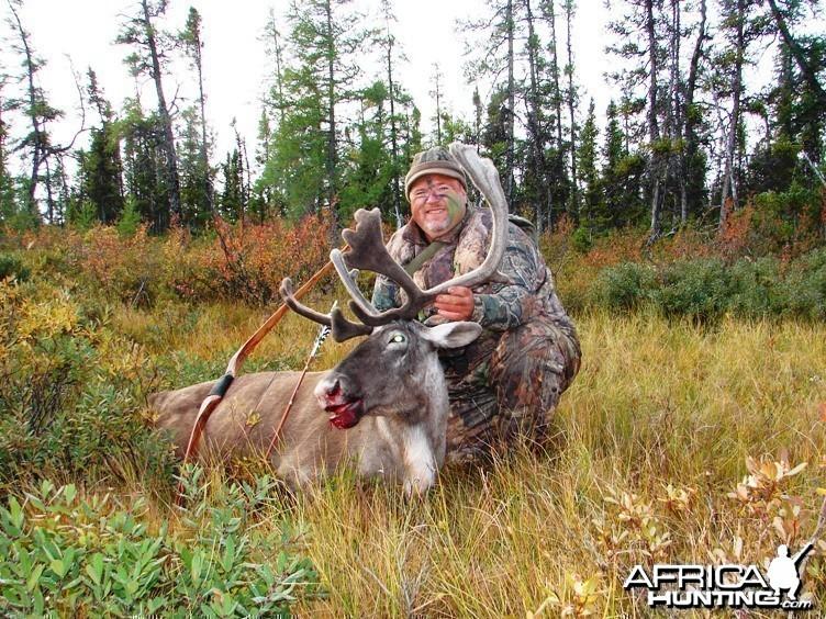 Bowhunting Caribou