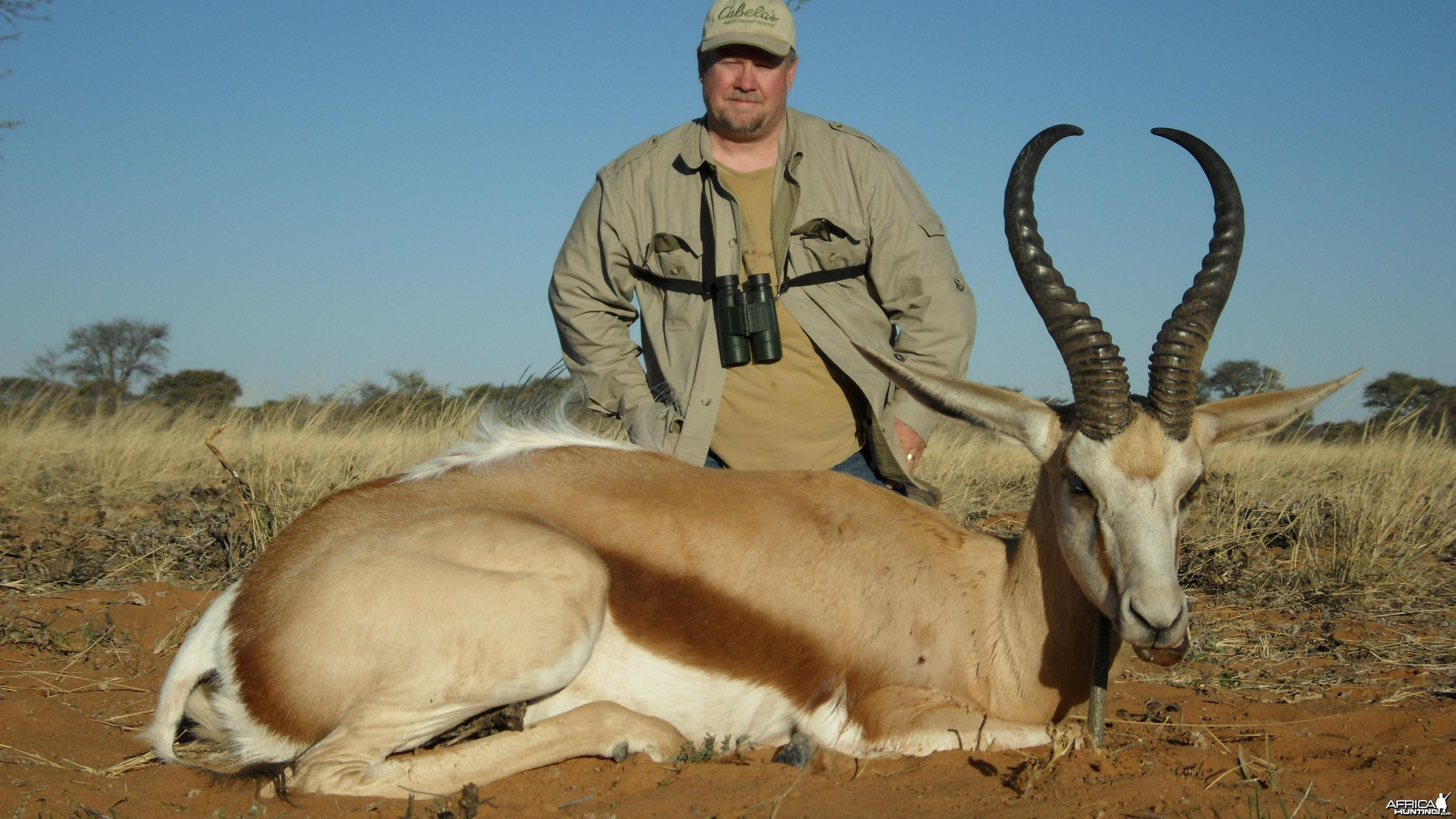 Hunting Springbok
