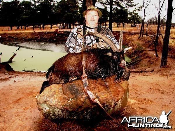 Bowhunting Ibex