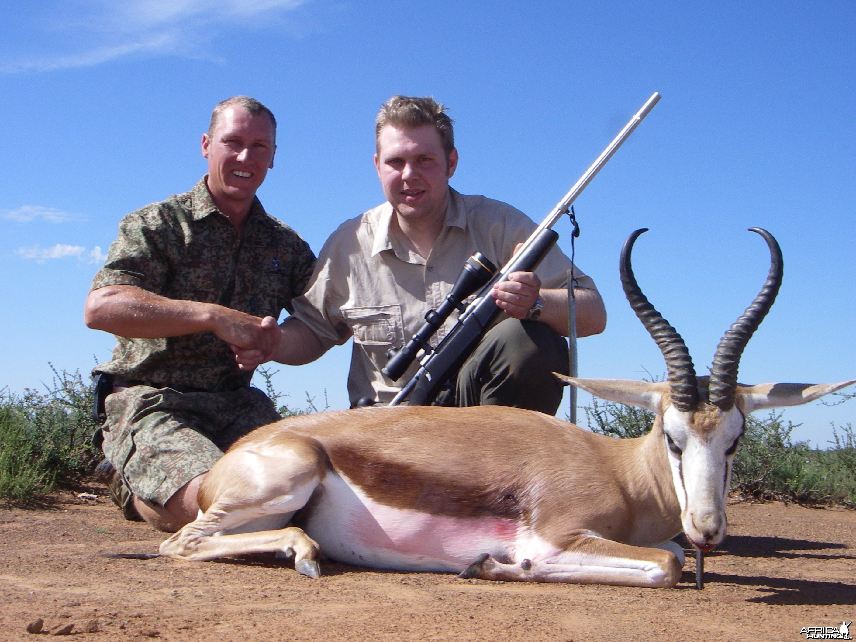 Springbok taken in South Africa