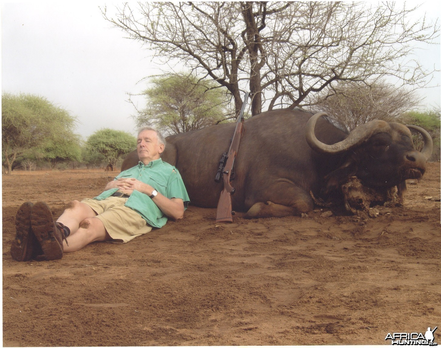 Buffalo hunting in South-Africa
