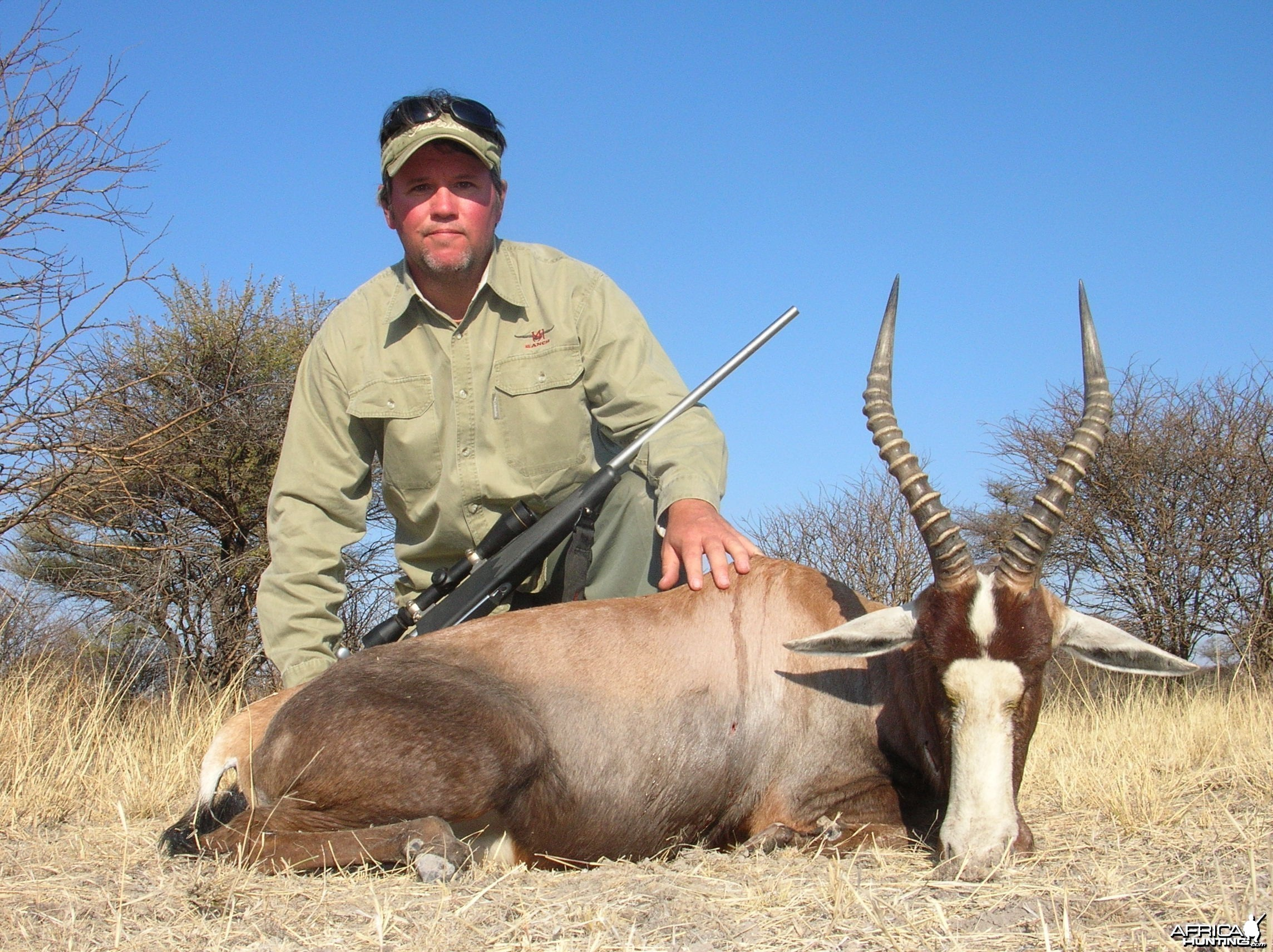 Blesbok Hunting in Namibia