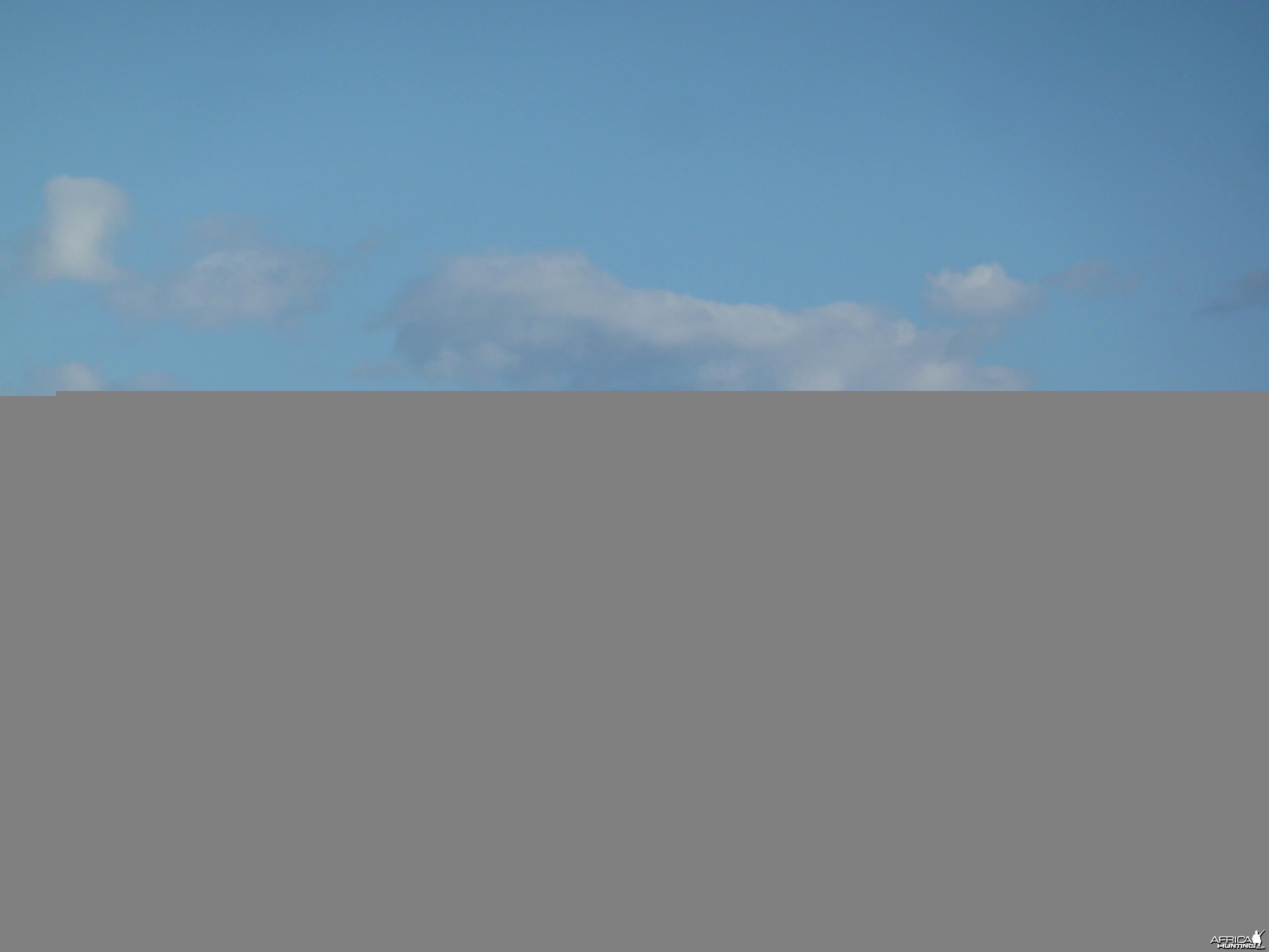 Marabou Namibia