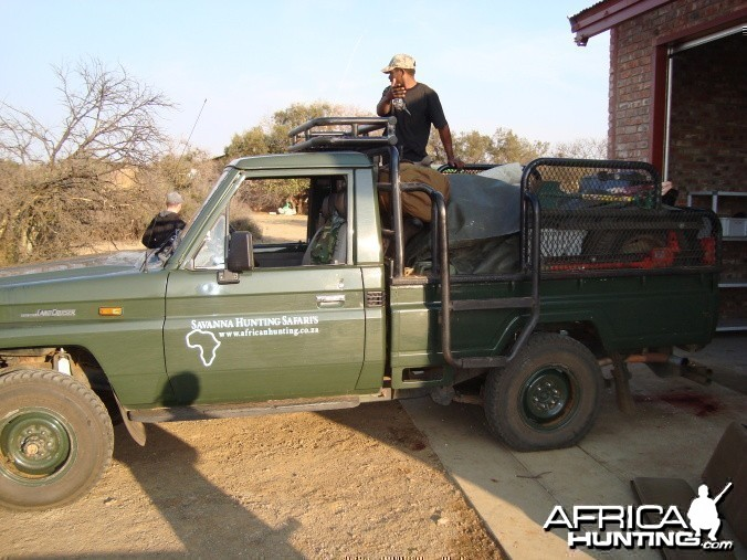Savanna Hunting Safaris hunting trucks