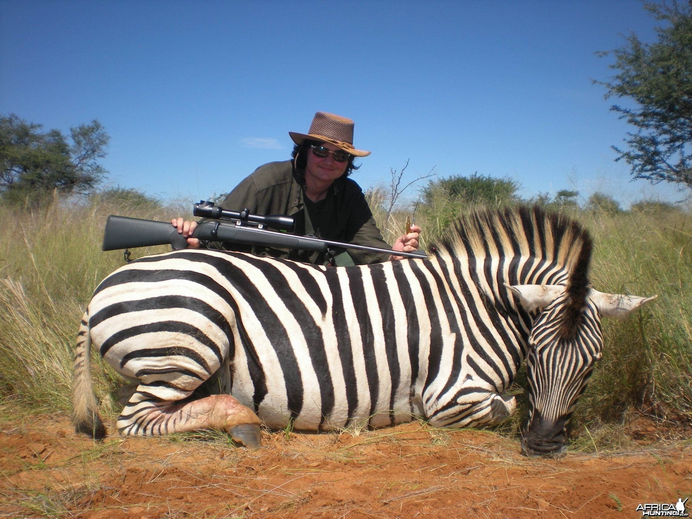 Hunting Burchell Zebra