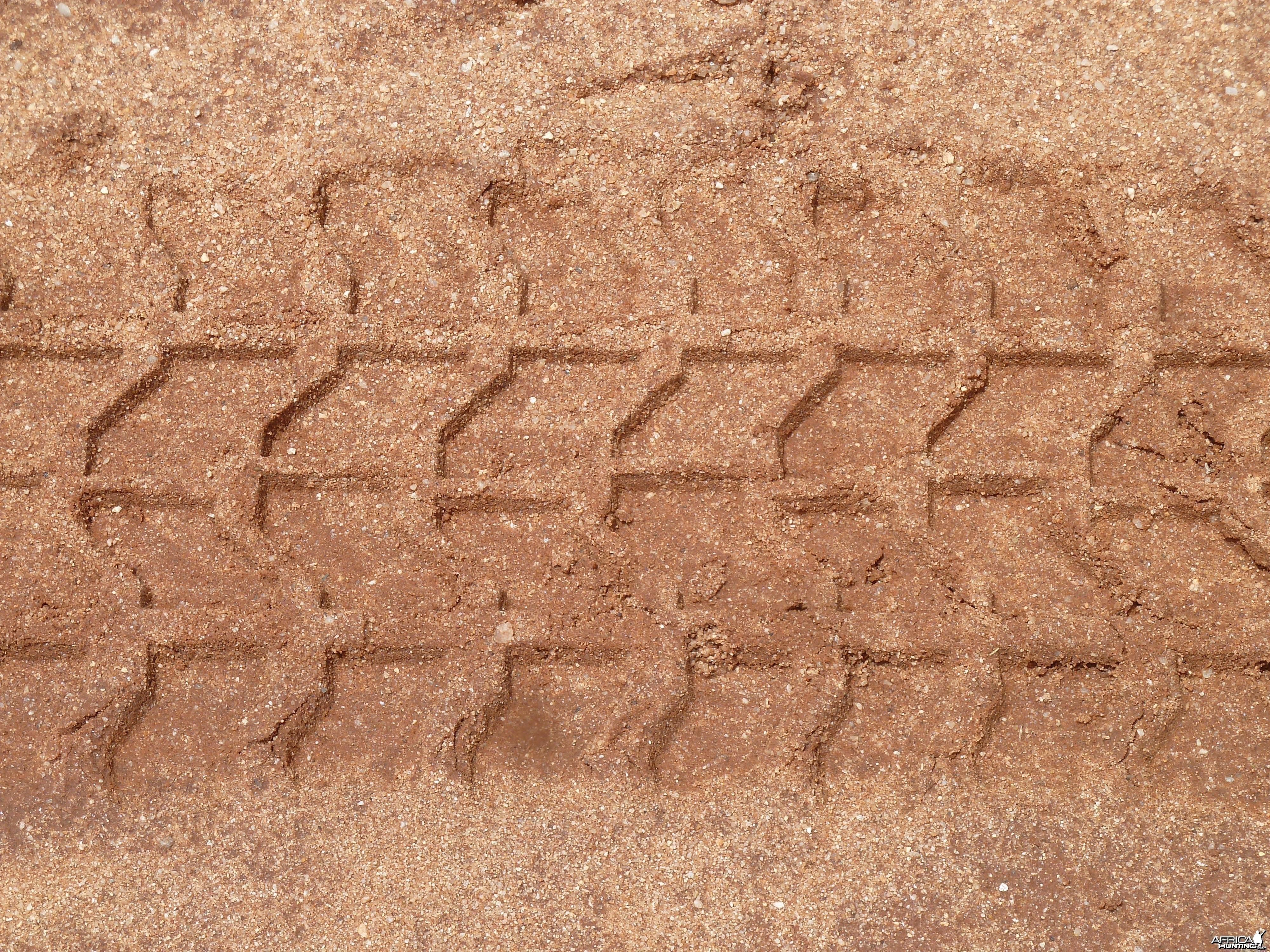 Hummer Track
