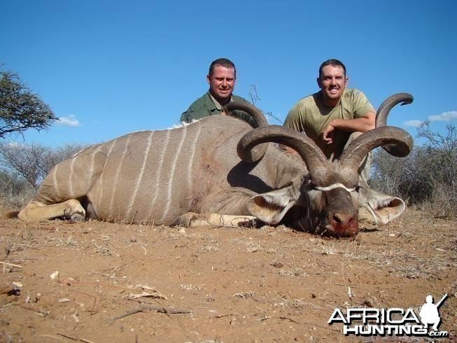 Kudu 59 3/4 inches