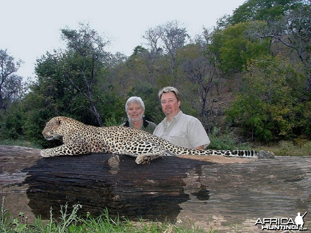 Leopard Hunt at Savuli Ranch, The Save, Zimbabwe