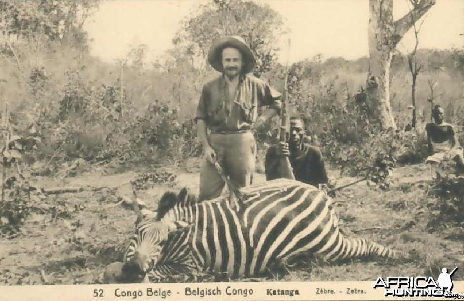 Zebra Hunting in Congo