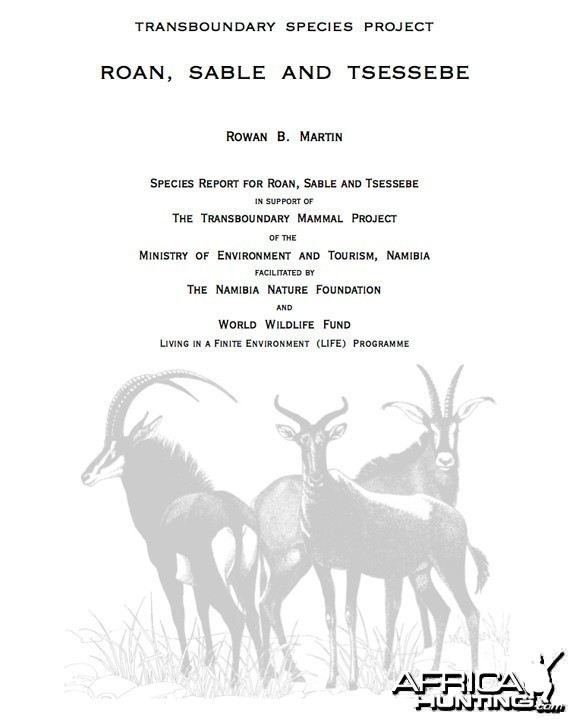 Roan Sable Tsessebe Report