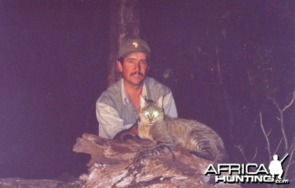 Hunting African Wildcat