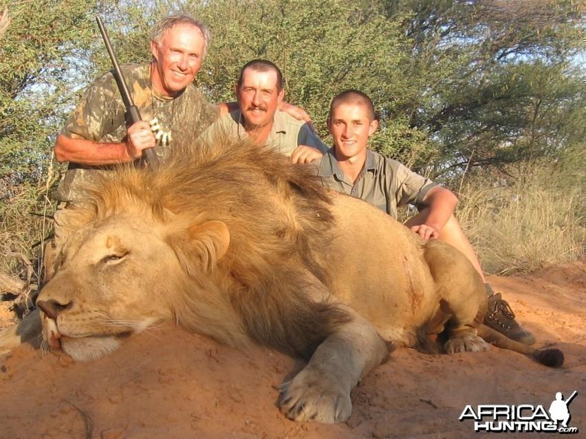 Hunting Lion