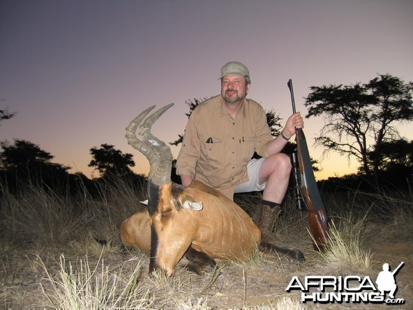 Hunting Red Hartebeest