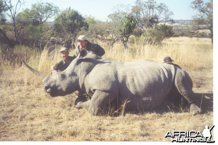Hunting White Rhino