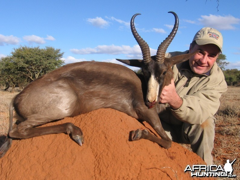 Hunting Black Springbok