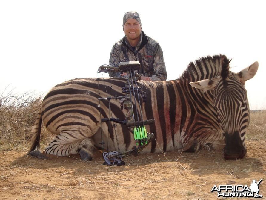Bowhunting Zebra